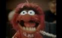 cena muppets